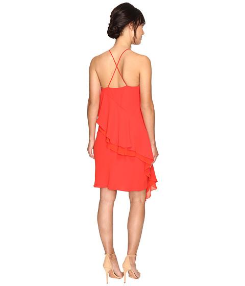 Shelli Segal Cocktail Dresses 112