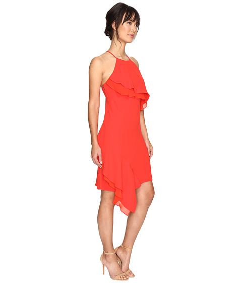 Shelli Segal Cocktail Dresses 81