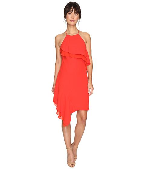 Shelli Segal Cocktail Dresses 108