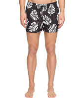 Dolce & Gabbana - Palm Frond Swim Trunks