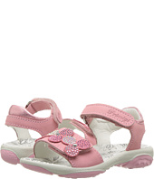 Primigi Kids - PBR 7595 (Toddler/Little Kid)