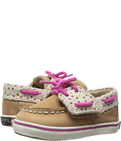 Sperry Top-Sider Kids - Intrepid Crib Jr. (Infant/Toddler)