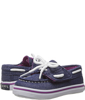 Sperry Top-Sider Kids - Seabright Crib Jr. (Infant/Toddler)