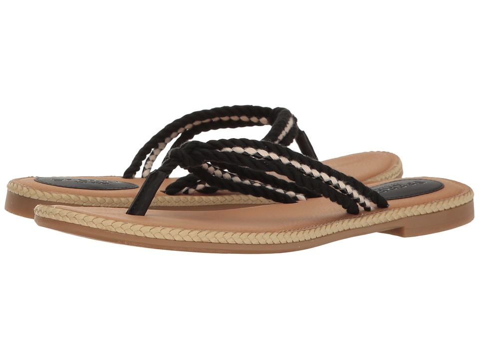 Sperry Anchor Coy Box (Black) Women