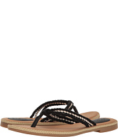 Sperry - Anchor Coy Box