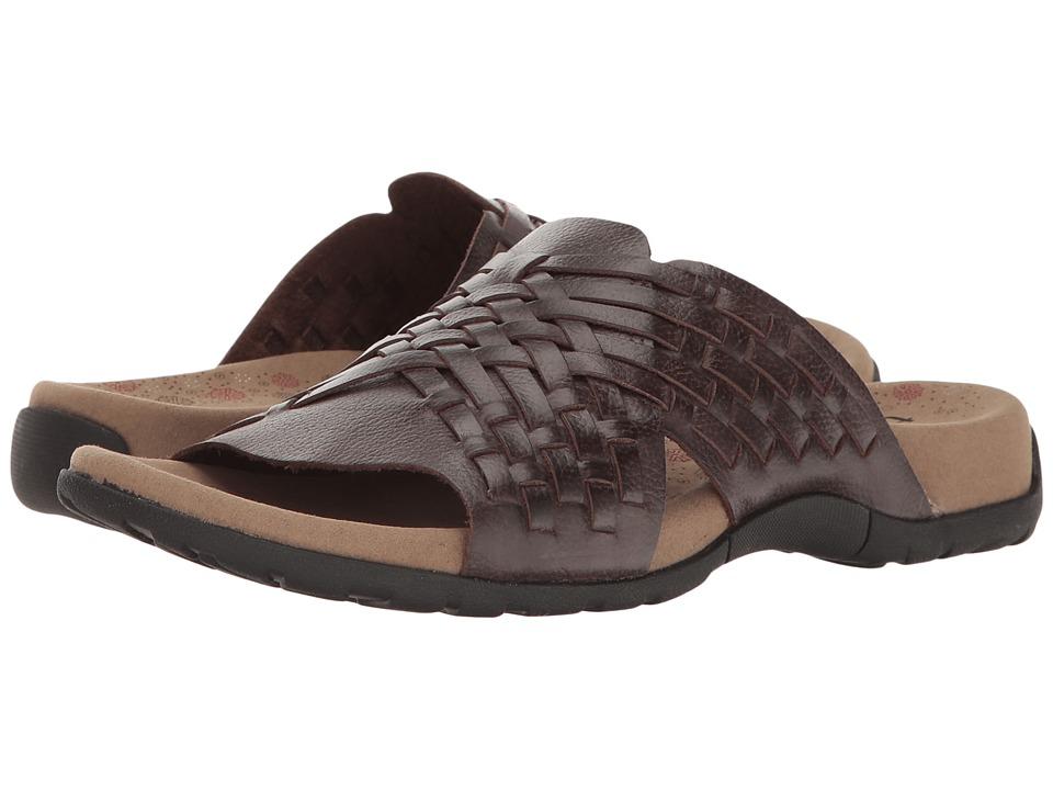 Taos Footwear Guru (Chocolate) Women