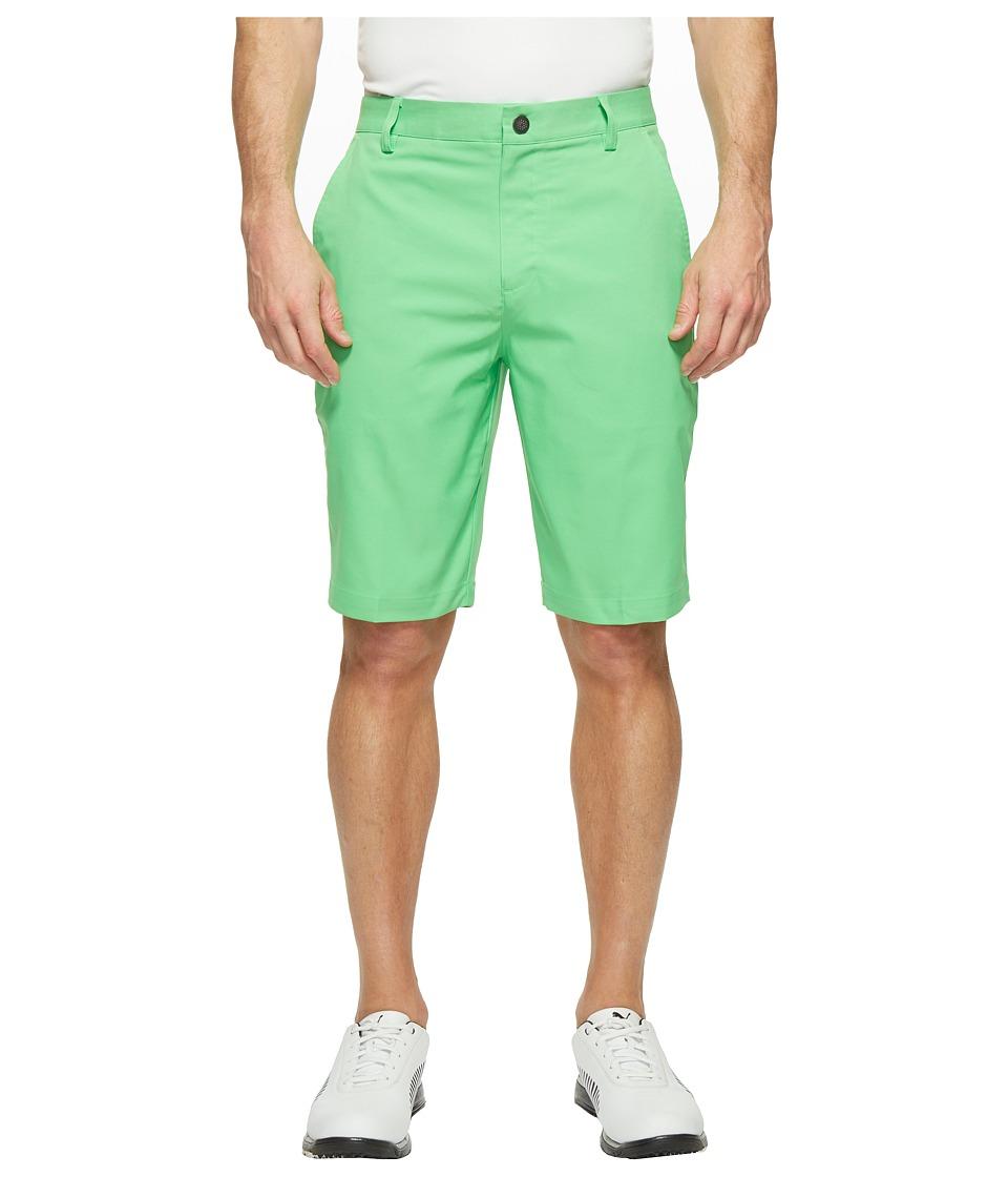 PUMA Golf Essential Pounce Shorts (Andean Toucan) Men