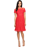 Maggy London - Bavarian Leaf Lace Fit and Flare Dress