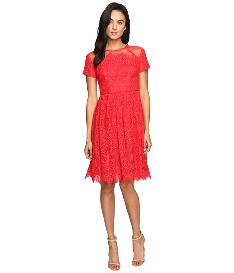Maggy London Bavarian Leaf Lace Fit and Flare Dress