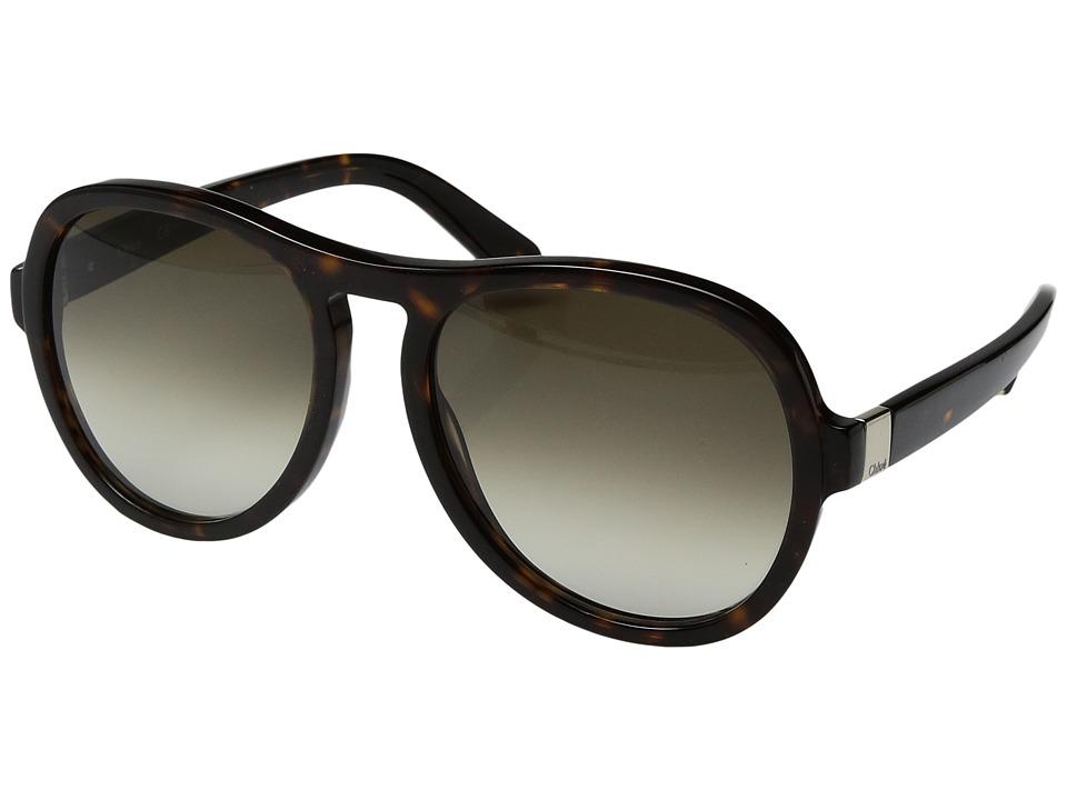 Chloe Marlow - CE716SL (Tortoise) Fashion Sunglasses