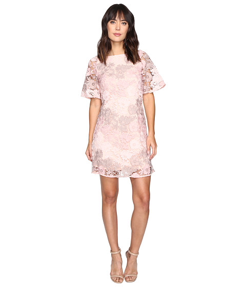 Taylor Embroidered Chemical Lace Dress