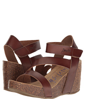 Blowfish - Hapuku