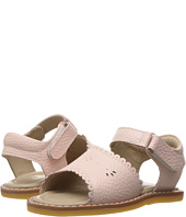 Elephantito - Classic Sandal w/Scallop (Toddler)