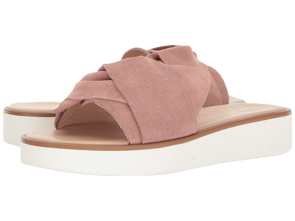 Seychelles - Coast (Rose) Womens Slide Shoes