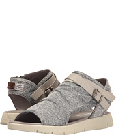 Blowfish - Baja