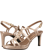 LifeStride - Introspect