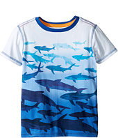 Hatley Kids - Shark Dip-Dye Graphic Tee (Toddler/Little Kids/Big Kids)