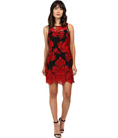 Karen Kane - Embroidered Net Dress