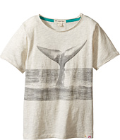 Appaman Kids - Super Soft Anchor Whale Tail Graphic Tee (Toddler/Little Kids/Big Kids)