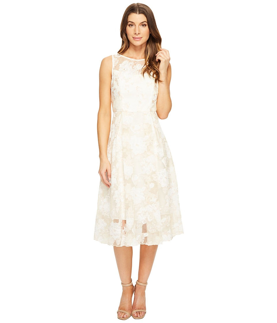 Adrianna Papell - Printed Organza Fit and Flare Midi