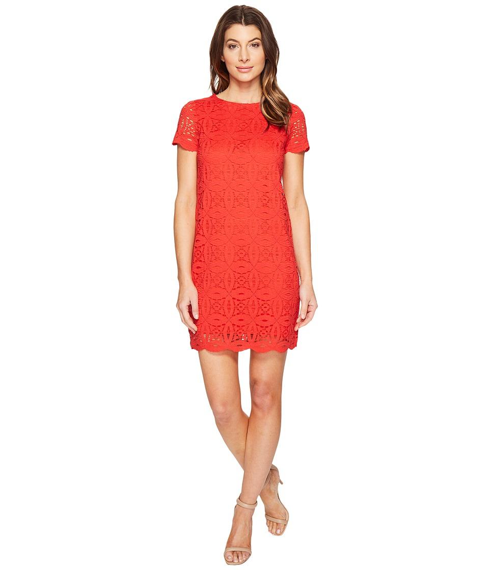 Maggy London Geo Petal Lace Shift Dress (Firecracker) Women