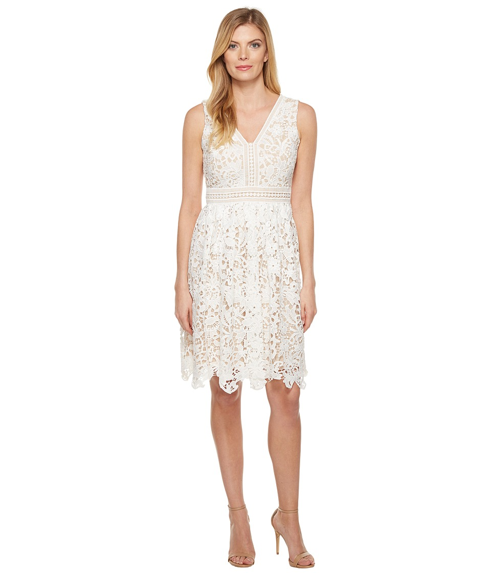 Maggy London Vine Flower Lace Fit and Flare Dress (White) Women