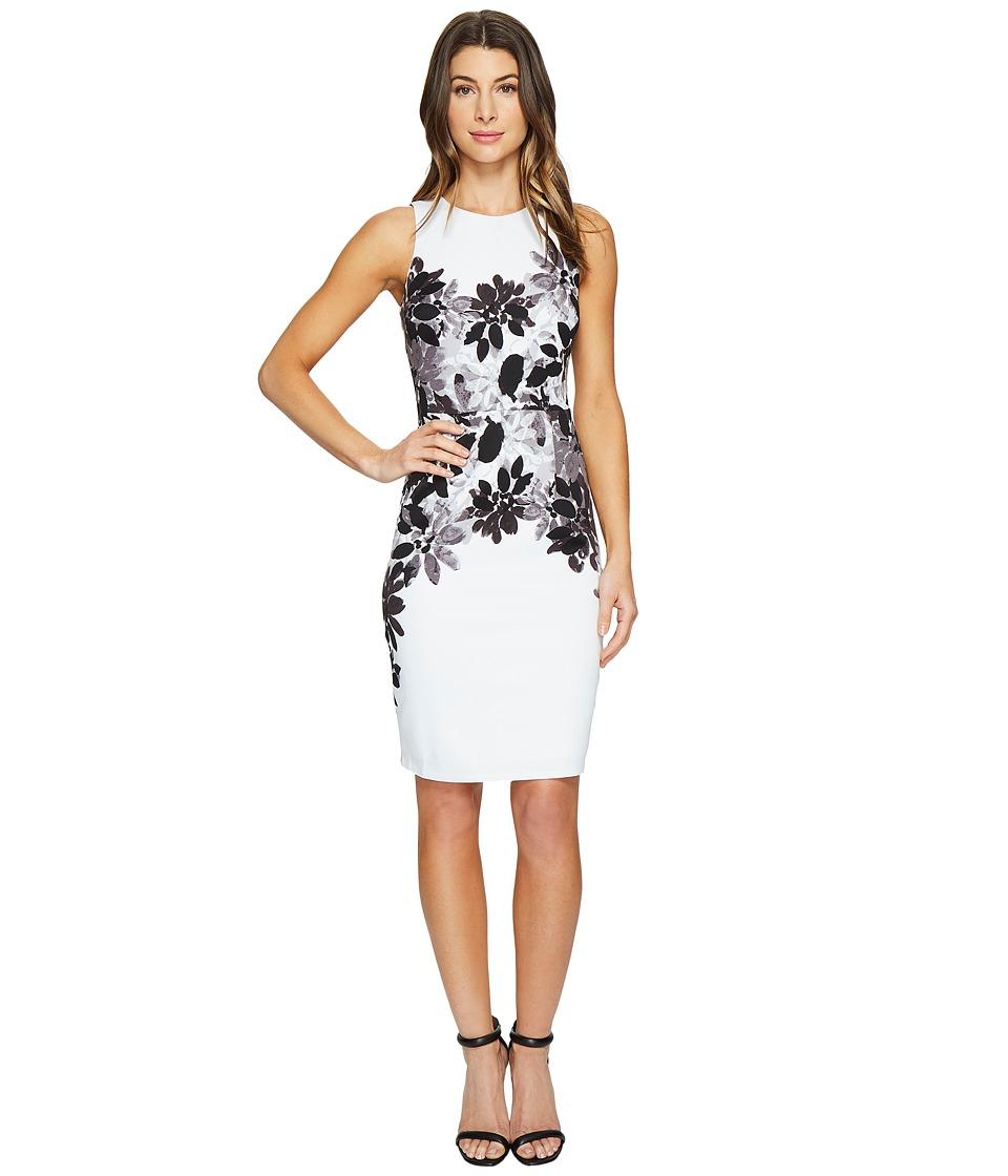 Maggy London Daisy Bloom Scuba Sheath Dress (Soft White/Grey) Women