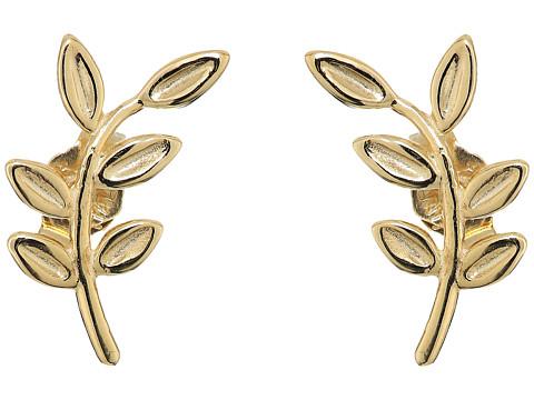 Dee Berkley 14KT Yellow Gold Leaf Climber Earrings - Yellow Gold