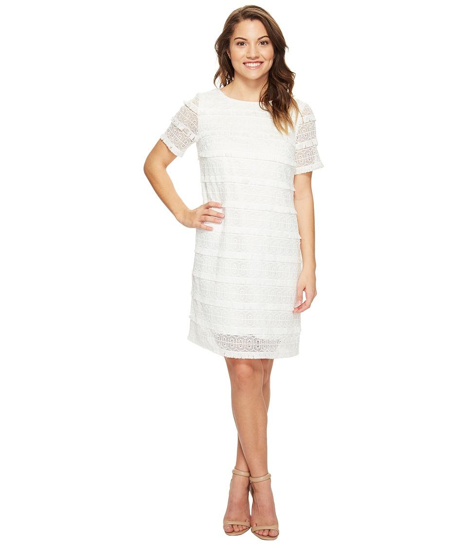 Tahari by ASL Petite - Petite Fringed Lace Shift Dress