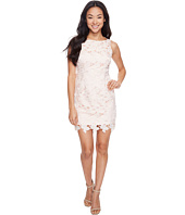 Tahari by ASL Petite - Petite Chemical Lace Sheath Dress