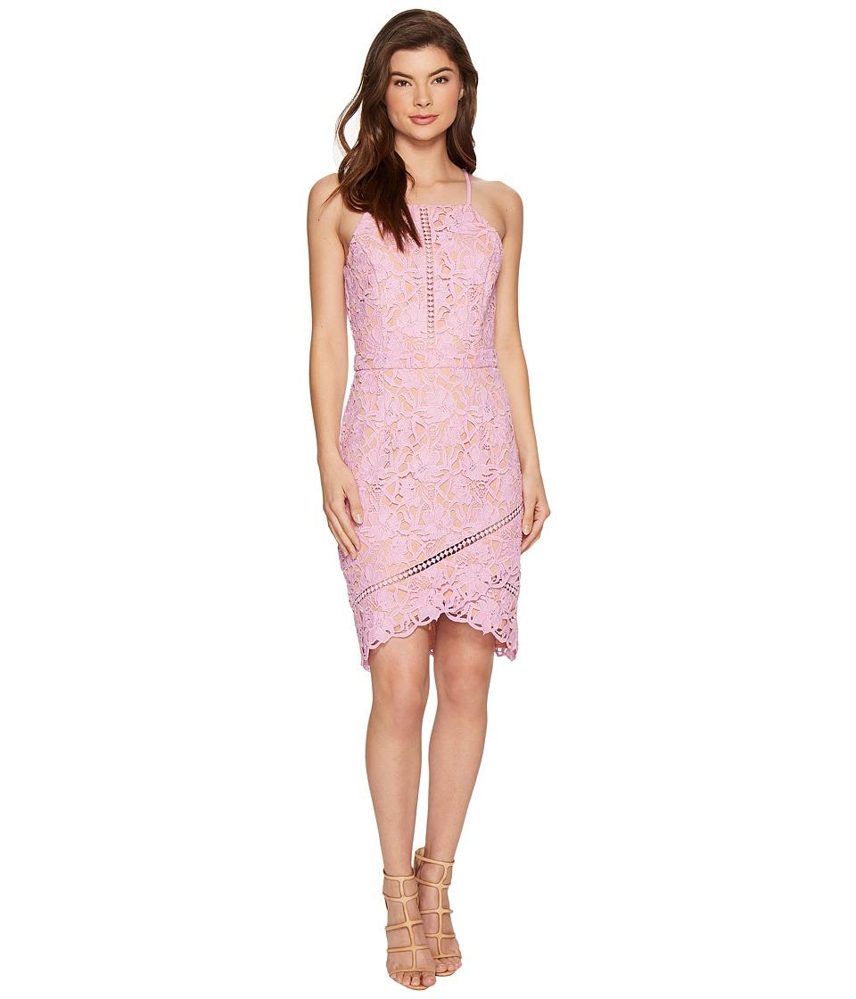 Adelyn Rae Sabina Woven Lace Sheath Dress (Lilac Pink) Women