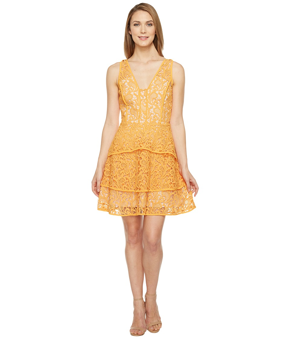 Adelyn Rae Maddie Woven Lace Fit and Flare (Mango) Women