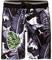 Dolce & Gabbana Kids - Banana Leaf Shorts (Toddler/Little Kids)