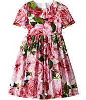 Dolce & Gabbana Kids - Rose Poplin Short Sleeve Dress (Toddler/Little Kids)