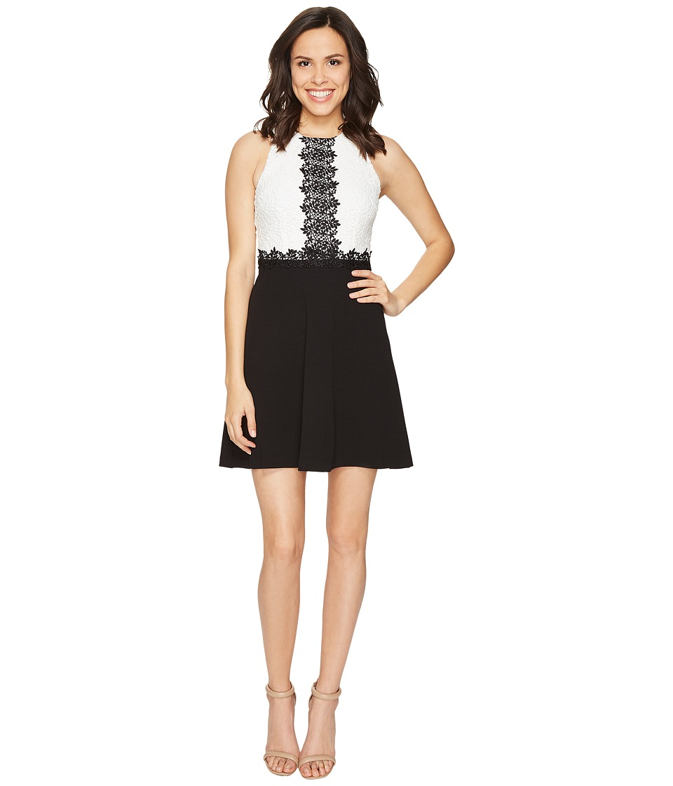Jessica Simpson Chemical Lace Fit and Flare Dress (Ivory/Black) Women
