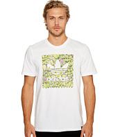 adidas Skateboarding - Cactus Tee