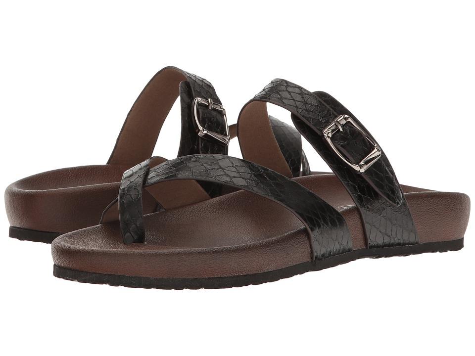 VOLATILE - Neva (Black) Womens Sandals