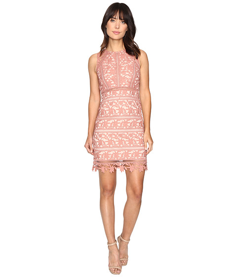 Brigitte Bailey Taren Sleeveless Lace Dress - Blush