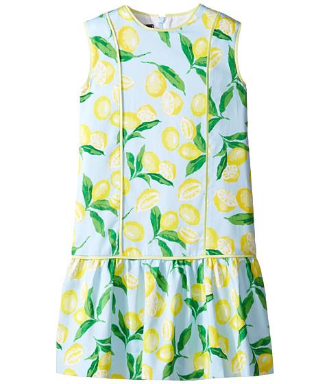 Oscar de la Renta Childrenswear Painted Lemons Cotton Drop Waist Dress (Toddler/Little Kids/Big Kids)