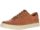 Sperry Sperry Gold Sport Casual TN w/ ASV