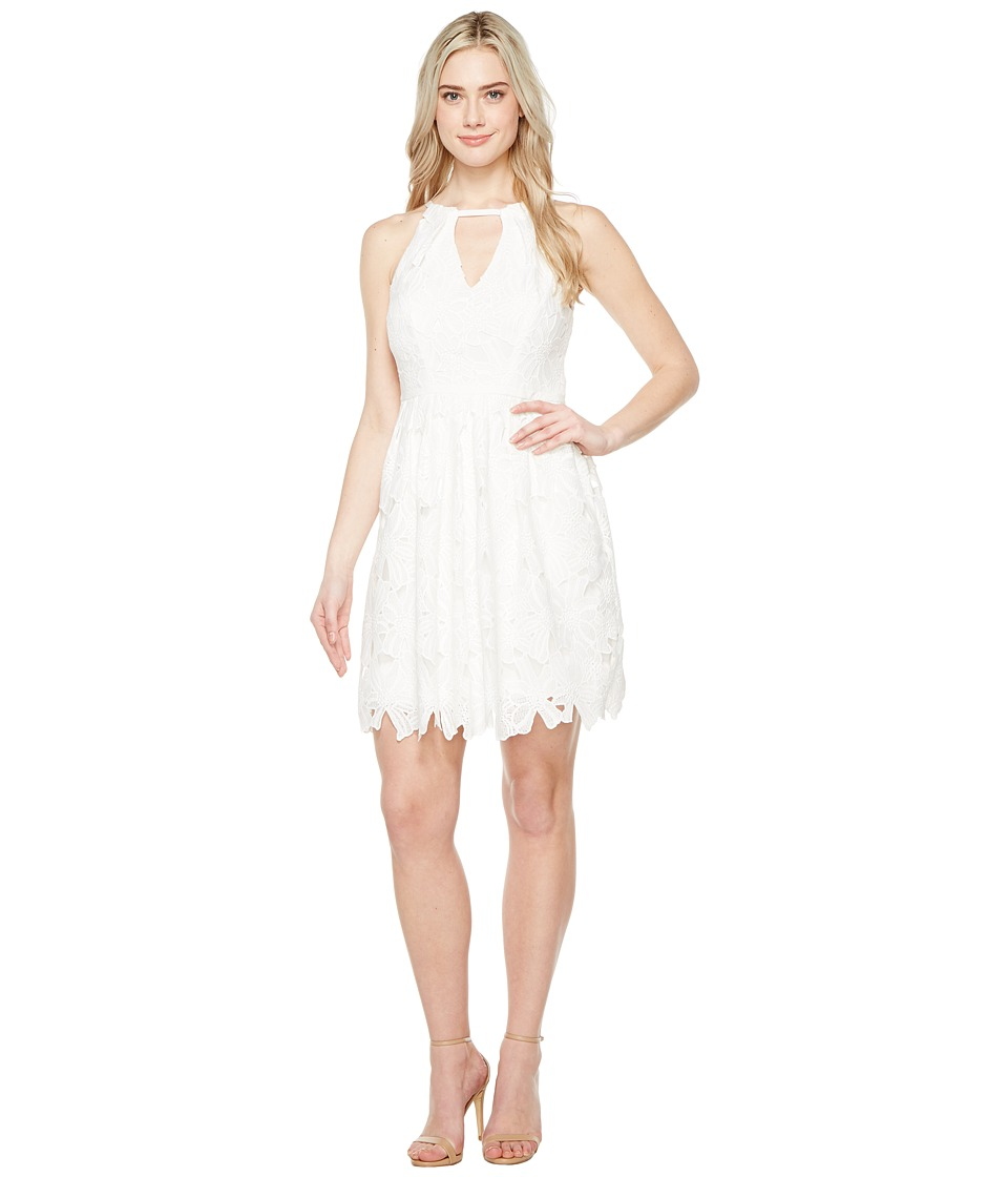 Adrianna Papell Adrianna Papell - Celcilia Lace Fit and Flare Dress with Halter Neckline