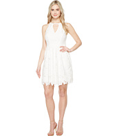 Adrianna Papell - Celcilia Lace Fit and Flare Dress with Halter Neckline