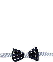 Mud Pie - Polka Dot Boxed Bow Tie