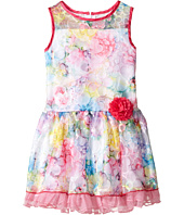 Us Angels - Sleeveless Illusion Drop Waist Lace Dress (Toddler/Little Kids)