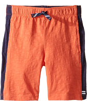 Splendid Littles - Always Active Shorts (Toddler)