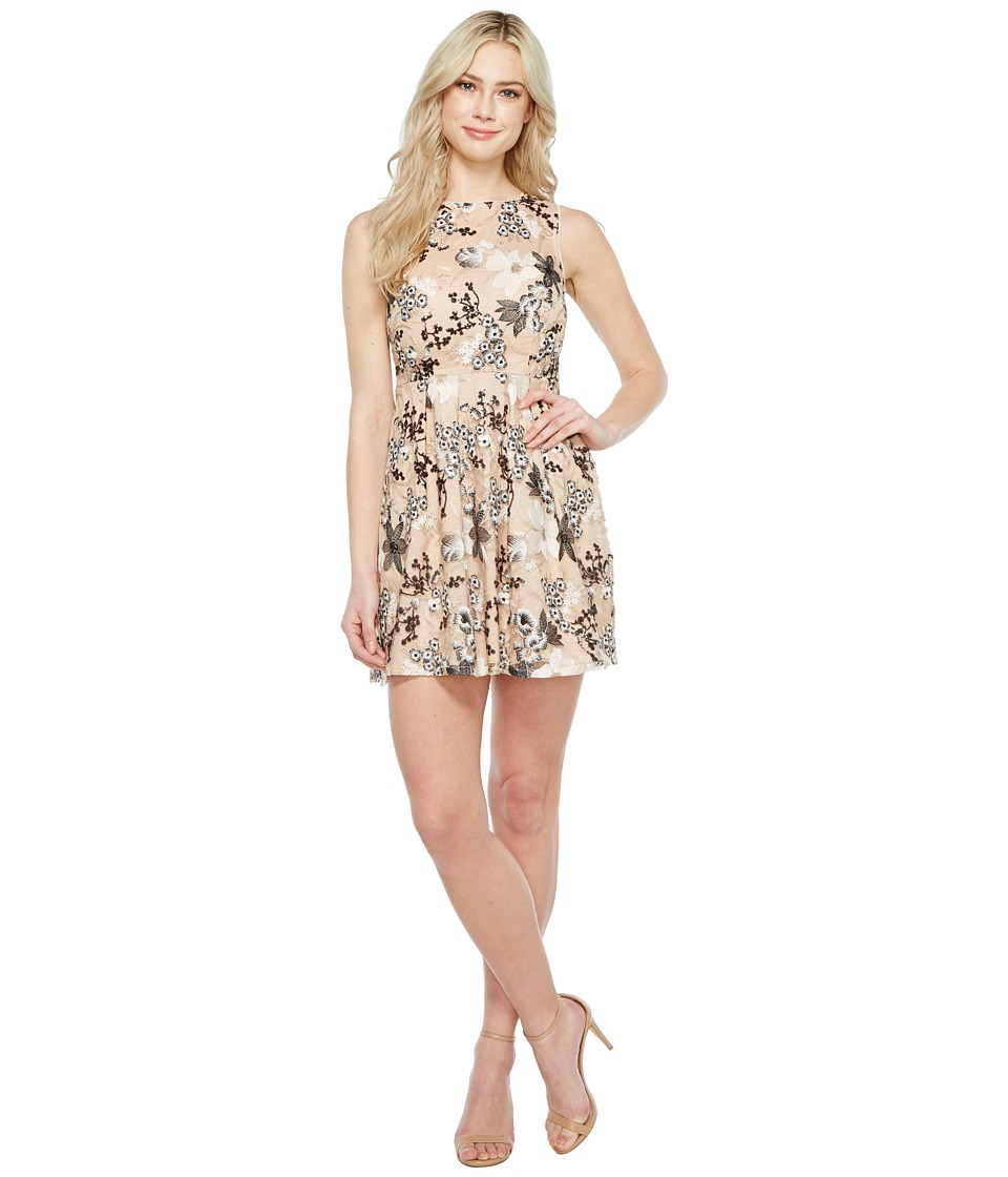 Aidan Mattox Embroidered Sequin Cocktail (Black/Nude) Women