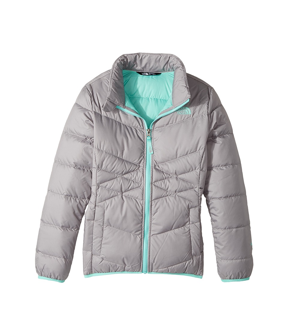 The North Face Kids Andes Down Jacket (Little Kids/Big Kids) (Metallic Silver (Prior Season)) Girl