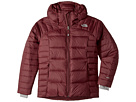 The North Face Kids Double Down Hoodie (Little Kids/Big Kids)