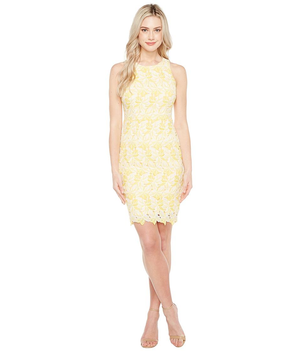 Maggy London - Star Flower Lace Scalloped Sheath Dress