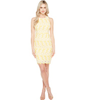 Maggy London - Star Flower Lace Scalloped Sheath Dress